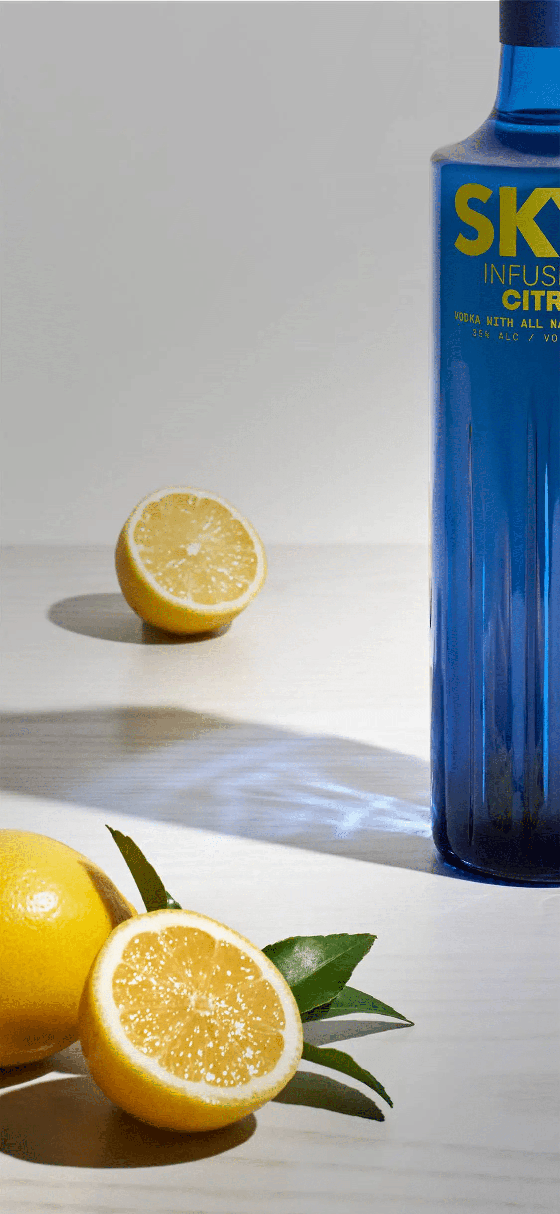 SKYY Infusions Citrus Vodka with lemon for mobile